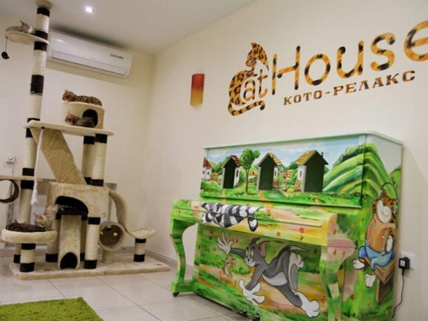 Cat House, Днепр